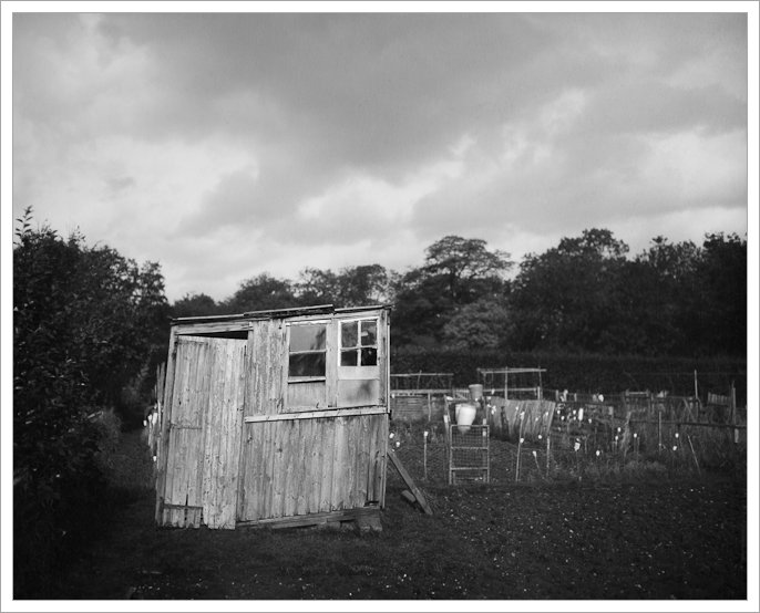 Allotment, Shed