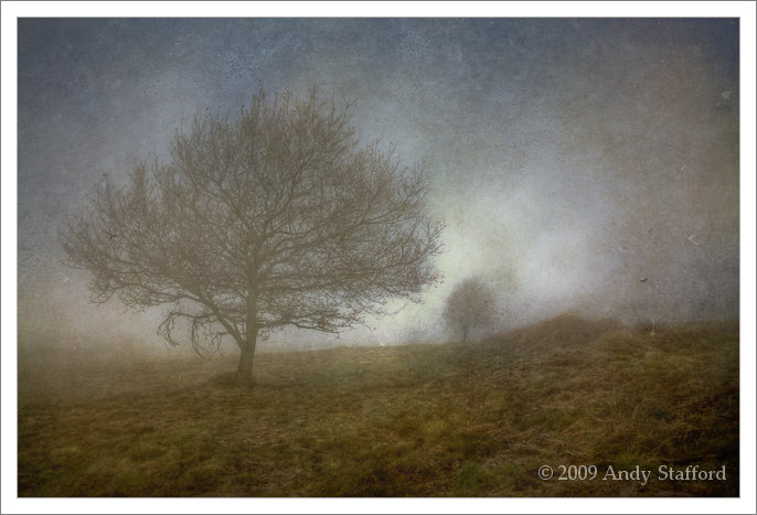 Misty Morning, Beacon Hill