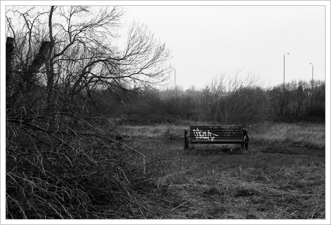 Bench and felled tree next to the River Soar