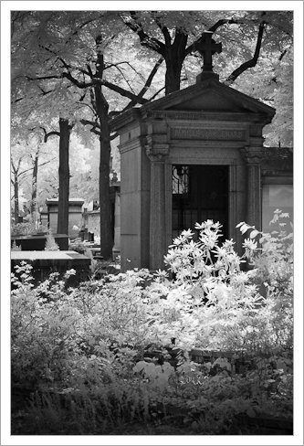 Montparnasse Cemetery, Paris, 590nm Infrared