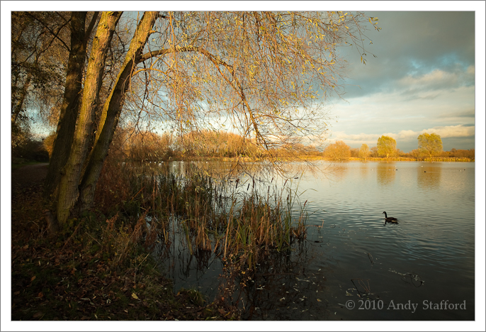 One Of The Last Days Of Autumn, Watermead Park